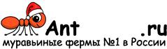Муравьиные фермы AntFarms.ru - Люберцы